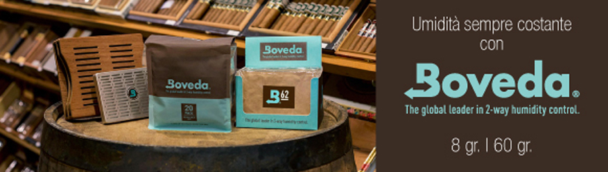 newsletter_boveda_ip