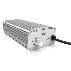 Electronic_ballast_600_watt_shiftable_1_